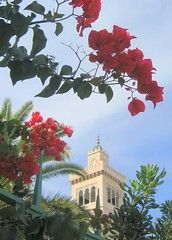 Bougainvillea and Minaret (Kurlylox1) Tags: flowers red building tower catchycolors minaret tunis mosque bougainvillea foliage urbannature blueribbonwinner