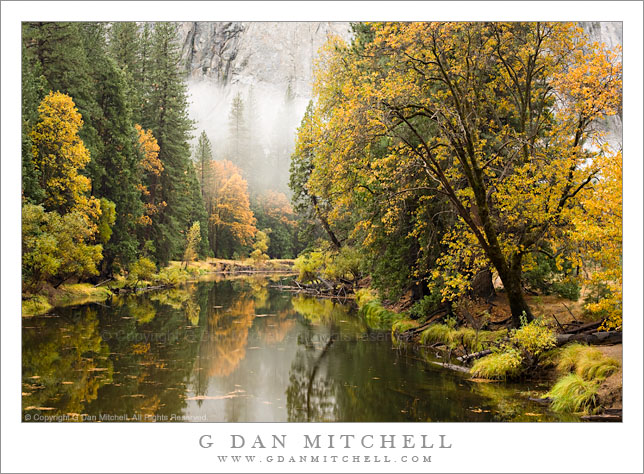 Merced River Fall Color, El Capitan Meadow Bridge