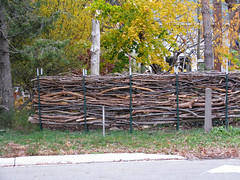 The Fencing (deu49097) Tags: autumn fence branches