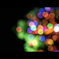wishes (shotam) Tags: light color nikon colorful bokeh illumination sigma christmastree explore  xmastree  d80 sigma1770mmf2845 hyogoperformingartscenter  takamatsupark
