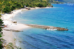 White sand beach, Oslob, Cebu (docjabagat) Tags: sea vacation beach tropical santander whitesandbeach