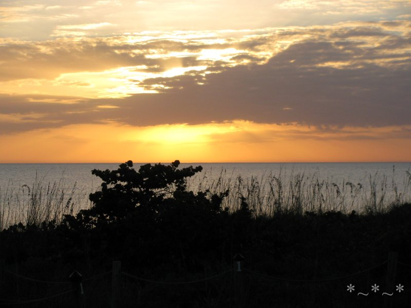 IMG_0027-Sanibel-Sunset-Gulf-of-Mexico-dunes