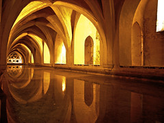 Real Alcazar, Sevilla (half_k) Tags: espaa reflection real sevilla spain perspective reflejo alcazar riflessi spagna reflejos giardini blackdiamond prospettiva riflesso siviglia blueribbonwinner reali flickrestrellas flickrcinated