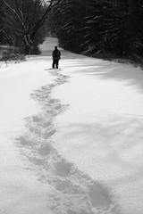 Going Away (Seabamirum) Tags: snow forest shadows path footprints pathscaminhos