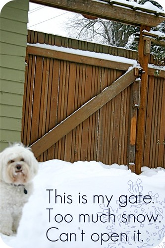 See here? This is the gate.