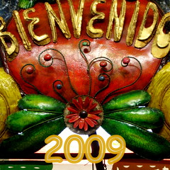 welcome 2009 / happy new year everyone! by ms.donnalee / donna cleveland