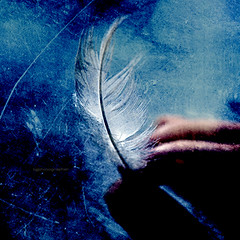 Soft like snow (tg | photographer) Tags: blue light black cute art texture photoshop dark painting square paint hand arte emotion finger fingers flight feather quadro volo mano azzurro lightly disegno dita plume leggero dito levity piuma leggera emozione platinumphoto anawesomeshot