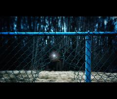 quick, make your escape! (marianna armata) Tags: blue light canada broken night forest fence interestingness interesting wire escape open hole quebec bokeh montreal panasonic chain explore torn marianna linked guiding armata explored lumixg1 mariannaarmata