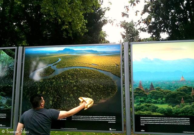 """(356) Limpiando los """"Bosques del mundo"""""""