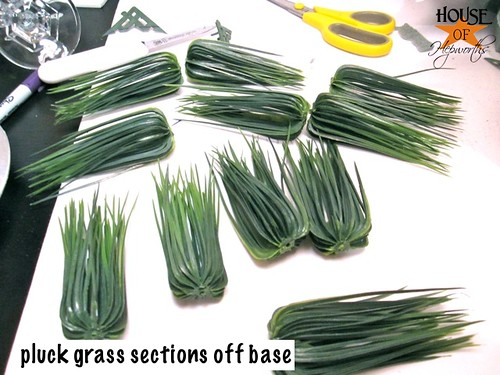 wheat_grass_dollar_store_08