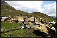 Nomads (Saeid Aghaei) Tags: life camp people mountain nature iran tent part nomad tribe  khorasan neyshaboor neyshabour herdsman binalood neyshabur neishabour nishapur  neishaboor  aparni abarshahr aparshatr  aparnaiac