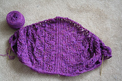 2338157770 7ebcf40397 m Sunday Shawl Progress