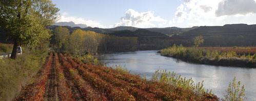 paisaje de la rioja alavesa