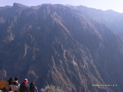 Canyon Colca (benitoooo) Tags: travel americalatina canyon per colca caon prou