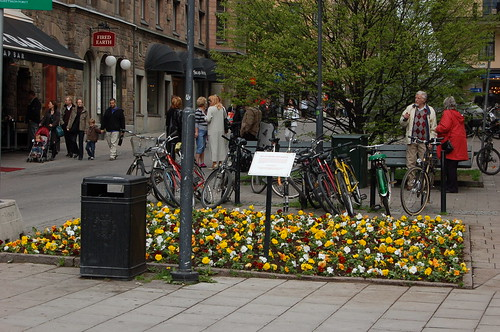 カラフルな花とチャリ