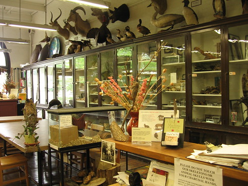 nature lab, front desk