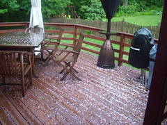 Patio Hail