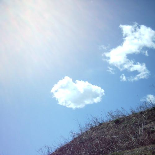 【写真】Sunshine