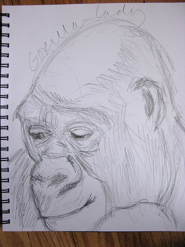 gorilla sketch 2 from the zoo
