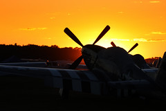 Mustangs at Sunset (Christopher Madeira) Tags: sunset plane wwii north american mustang oshkosh p51d photofaceoffwinner pfogold