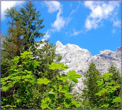 The Alps in Bavaria, Germany (Tobi_2008) Tags: trees sky mountains alps nature leaves germany landscape bayern deutschland bavaria natur himmel berge ciel alpen landschaft bltter bume allemagne soe germania smrgsbord naturesfinest beautifulearth blueribbonwinner digitalcameraclub hochkalter wimbachtal berchtesgadenerland outstandingshots flickrsbest anawesomeshot isawyoufirst diamondclassphotographer flickrdiamond theunforgettablepictures rubyphotographer