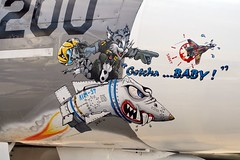 Gotcha...Baby! (mvonraesfeld) Tags: california art museum cat plane painting airplane nose flying display f14 aircraft aviation military air flight navy jet airshow santarosa retired 2008 usn mig tomcat grumman pcam aim54 wingsoverwinecountry pacificcoastairmuseum