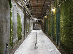 Underneath Alcatraz