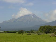 2001-12-02 01-03 Neuseeland 423