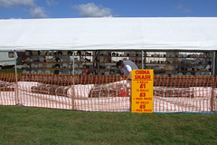 Rudgwick Steam & Country Show #42