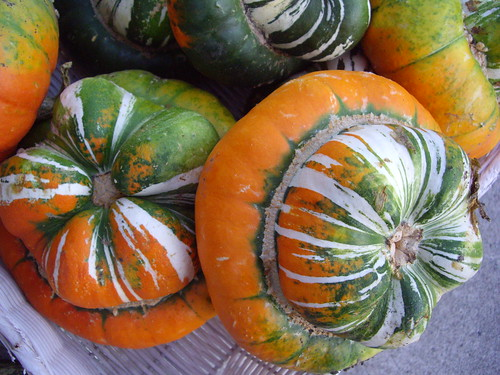Turban Squash from Persinger Farms