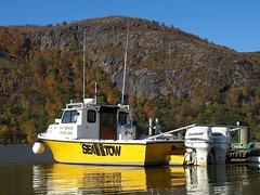 SEA TOW Rescue Boat on the Hudson River, Cold Spring NY (jag9889) Tags: autumn rescue ny newyork fall yellow boat marine state vessel foliage kayaking tugboat hudsonriver tug 2008 coldspring assistance services nys towing seatow workboat putnamcounty y2008 jag9889