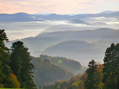 The massif of Vosges in autumn (mamietherese1) Tags: autumn true searchthebest alsace legacy topgun magicalmoments autofocus wow1 wow2 wow3 wow4 greatphotographers beautysecret thegalaxy imagepoetry kartpostal 3000v120f worldbest anawesomeshot favemegroup5 newacademy concordians flickrslegend theperfectphotographer thesuperbmasterpiece multimegashot absolutelystunningscapes theenchantedcarousel sensationalcreationsofexcellence gha6 vosplusbellesphotos jediphotographer ubej paololivornosfriends goldenart naturescreations phvalue thecelebrationoflife elitephotographers flickrclassique capturethefinest redmatrix yourwonderland oracoob selectbestfavorites sailsevenseas coppercloudsilvernsun newgoldenseal theadmirergroup fugitivemoment fleursetpaysages exoticimage exceptionalphotographsgroup greaterphotographers sunofgodphotographer dblringexcellence greatestphotographers tplringexcellence ultimatephotographers healinglightofthespirit allnaturesparadise bestofblinkwinners galleryoffantasticshots flickrstruereflection1 trueexcellence1 excellence1 rememberthatmomentlevel1 flickrsfinestimages1 sunrays5 rememberthatmomentlevel2 me2youphotographylevel2 me2youphotographylevel3 me2youphotographylevel1 me2youphotographylevel4