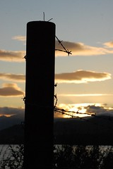 Fence post at sunset (365/142)