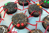 Deadly Chocolate Spider cupcakes