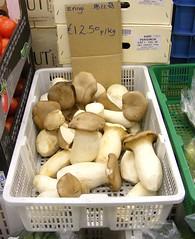 Losse verkoop King Oyster Mushroom