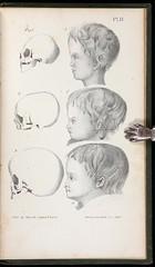 198139f.jpg (astropop) Tags: art illustration antique auction books medicine morbidanatomy pbagalleries