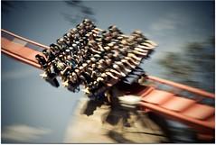 going down? (kevkev44) Tags: bm rollercoaster coaster picnik buschgardens busch buschgardenstampa sheikra alignements adobelightroom lighroom buschgardensafrica divemachine bolligermallibard