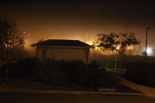 Sligthly creepy night foggy shot