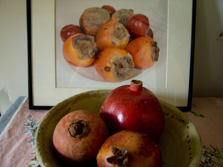 persimmons & pomegranates