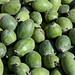 Guava_6
