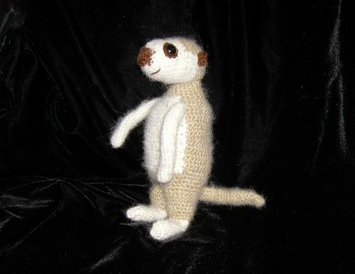 meerkat-profile