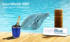 LightBlue PF 2009