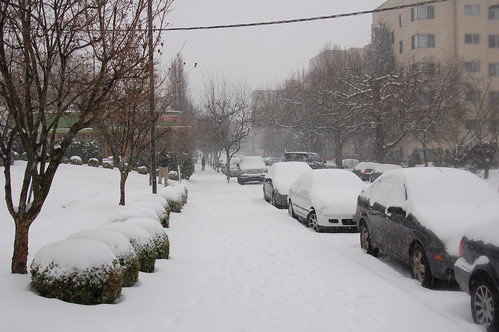 DSC_0036_sidewalk_NW_22nd