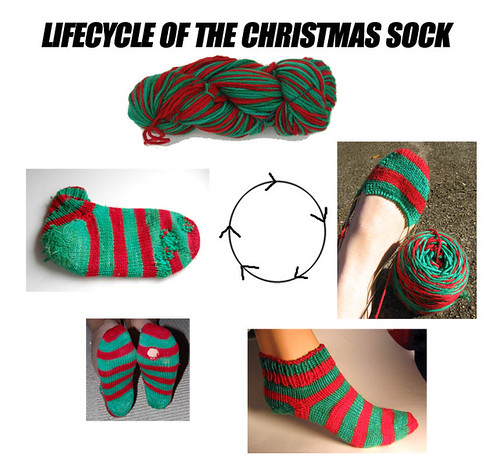 Christmassocklifecycle
