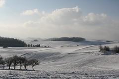 Bucklige Welt (anuwintschalek) Tags: winter snow nature landscape austria january hills 28135is lumi 2009 talv buckligewelt aplusphoto canoneos1000d