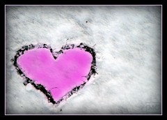 cold cold heart (photos4dreams) Tags: snow cold love heart valentine brokenheart coldheart photos4dreams photos4dreamz p4d