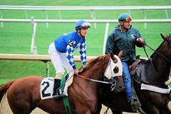 2010-09-29 (41) r2 Oliver O. Castillo on #2 Grand Gracie (JLeeFleenor) Tags: horses ma caballo cheval photography photo photos uma jockey gigi laurel jinete cavallo cavalo each kuda alogo lrc hest thoroughbreds soos hevonen koin  jokey hst  jquei  ko faras   konj    dokej rennreiter fantina  pfeerd  dokej     okej kilparatsastaja  jocheu