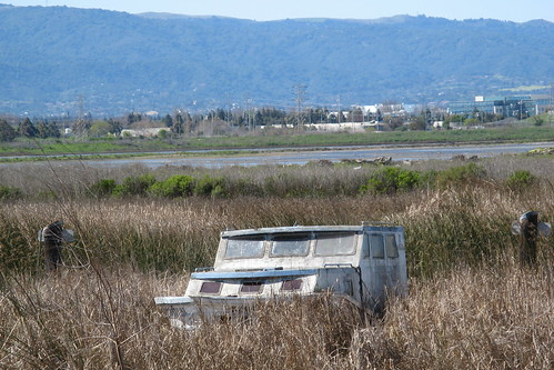 Decaying cabin cruiser