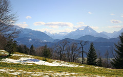 Wonderful view to the bavarian mountains (rotraud_71) Tags: trees sun snow mountains clouds shadows meadow bluesky steinernesmeer latewinter fhn salzburgerland watzmann berchtesgadenerland thecontinuum abigfave austriabavaria superbmasterpiece diamondclassphotographer 1on1landscapesphotooftheweek absolutelystunningscapes gfalls eingrosartigertag 1on1landscapesphotooftheweekapril2008