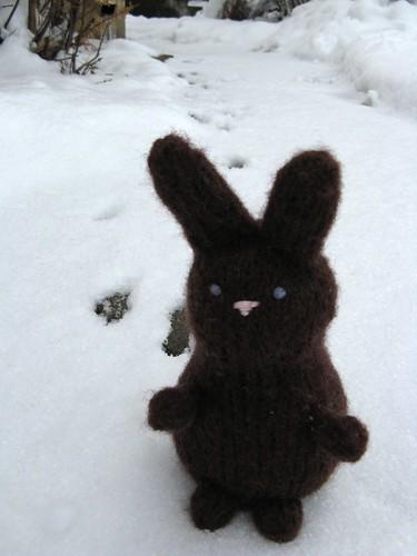 #83 - Bunny Tracks